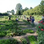 The Garden – A Place for Lifelong Learning